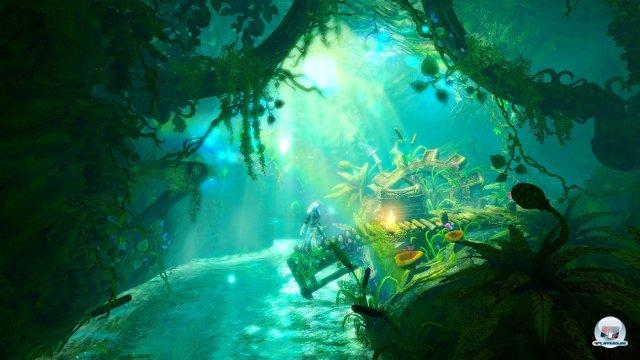 Screenshot - Trine 2 (Wii_U) 2362842