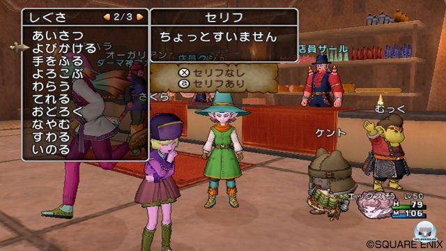 Screenshot - Dragon Quest X Online (Wii) 2273327