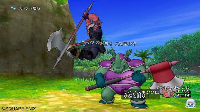 Screenshot - Dragon Quest X Online (Wii) 2289952
