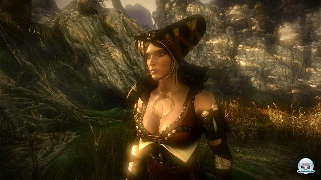 Screenshot - The Witcher 2: Assassin of Kings (PC) 2223033