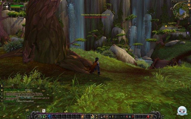 Screenshot - World of WarCraft: Mists of Pandaria (PC) 2333092
