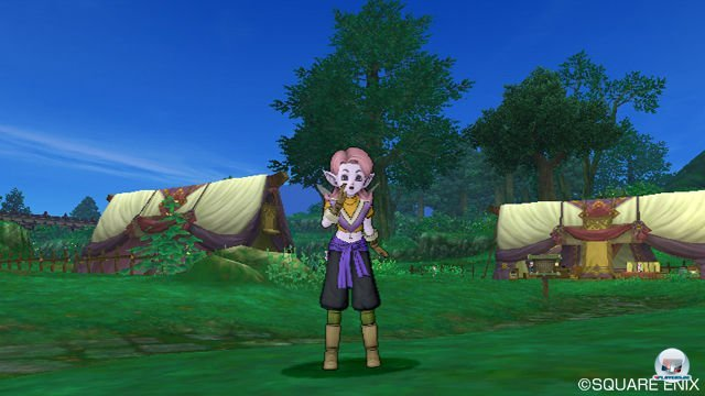 Screenshot - Dragon Quest X Online (Wii) 2277602