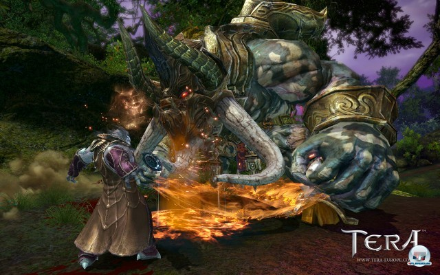 Screenshot - TERA (PC) 2241139