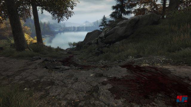Screenshot - The Vanishing of Ethan Carter (PlayStation4) 92510193