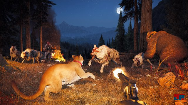 Screenshot - Far Cry 5 (PC) 92561009