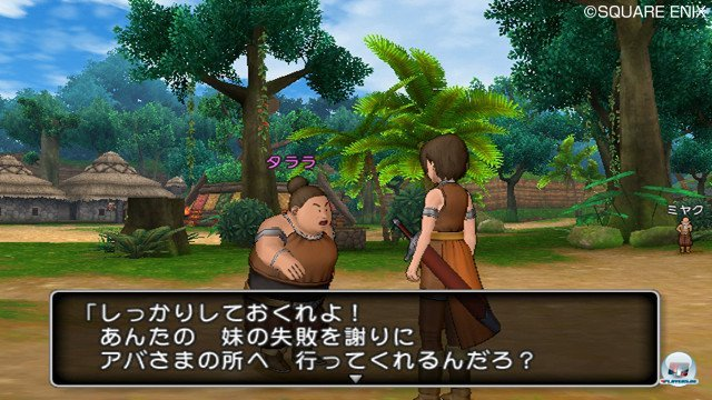Screenshot - Dragon Quest X Online (Wii) 2357262