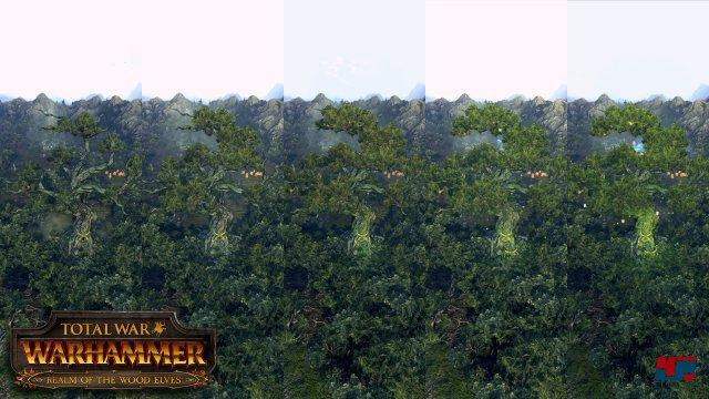 Screenshot - Total War: Warhammer (Linux)