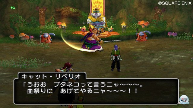 Screenshot - Dragon Quest X Online (Wii) 2365422