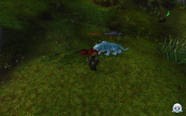 Screenshot - World of WarCraft: Mists of Pandaria (PC) 2334382