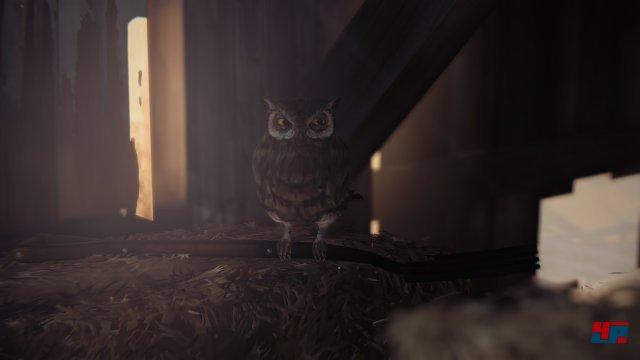 Screenshot - Life is Strange - Episode 4: Dark Room (360) 92511630