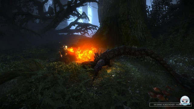 Screenshot - The Witcher 2: Assassin of Kings (PC) 2217102