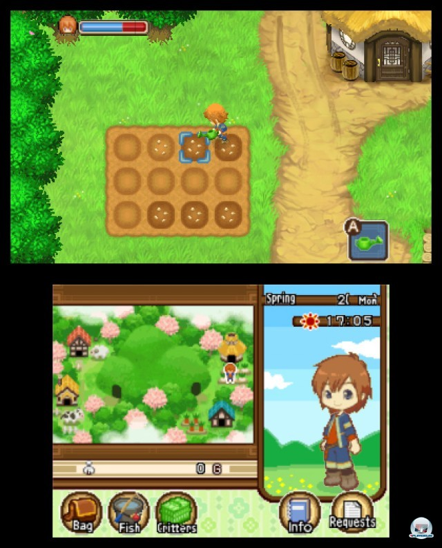 Screenshot - Harvest Moon: The Tale of Two Towns (3DS)