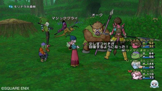Screenshot - Dragon Quest X Online (Wii) 2295657