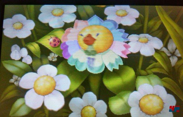 Die Blüte muss genauso aussehen, wie auf unserem Bild.