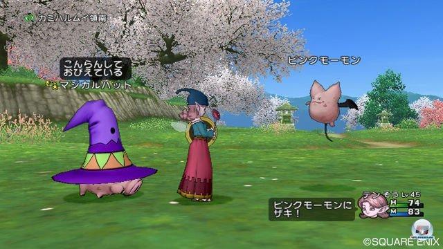 Screenshot - Dragon Quest X Online (Wii) 2295637