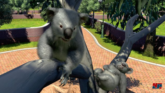 Screenshot - Zoo Tycoon (PC) 92551608