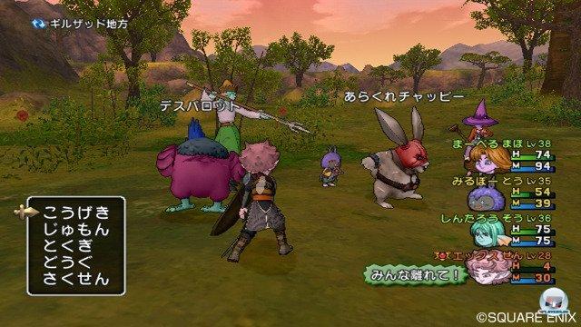 Screenshot - Dragon Quest X Online (Wii) 2295697