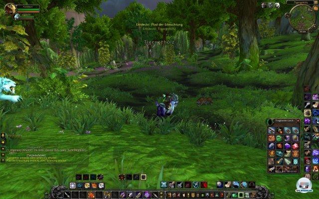 Screenshot - World of WarCraft: Mists of Pandaria (PC) 2334087