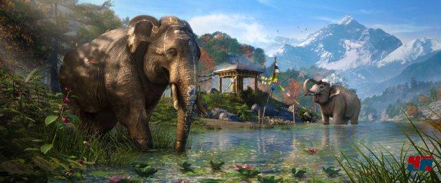 Elefanten sind nicht nur schön anzusehen, sie dienen auch als mächtige Reittiere.