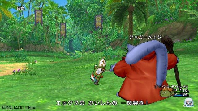 Screenshot - Dragon Quest X Online (Wii) 2295642