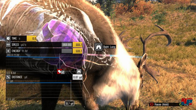 Screenshot - Big Game Hunter: Pro Hunts (PC)