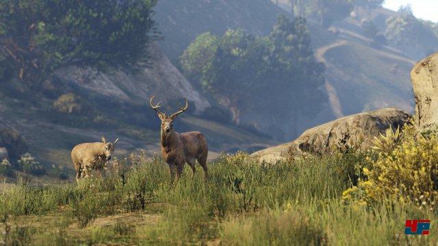 Screenshot - Grand Theft Auto 5 (PlayStation4) 92495193