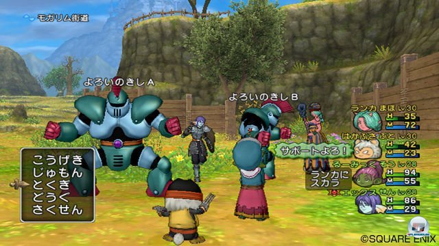 Screenshot - Dragon Quest X Online (Wii) 2287227