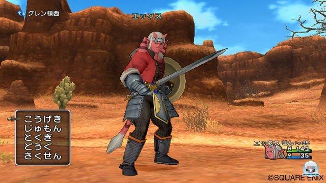 Screenshot - Dragon Quest X Online (Wii) 2289887