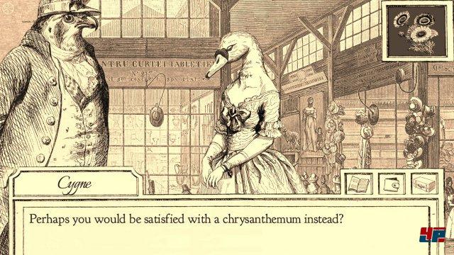 Was hat der Schwan zu verbergen? Wer all zu forsch nachfragt, kann die Dame verscheuchen.