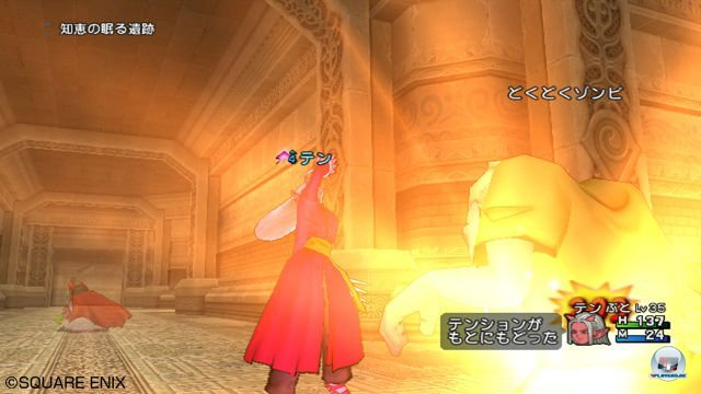 Screenshot - Dragon Quest X Online (Wii) 2292957
