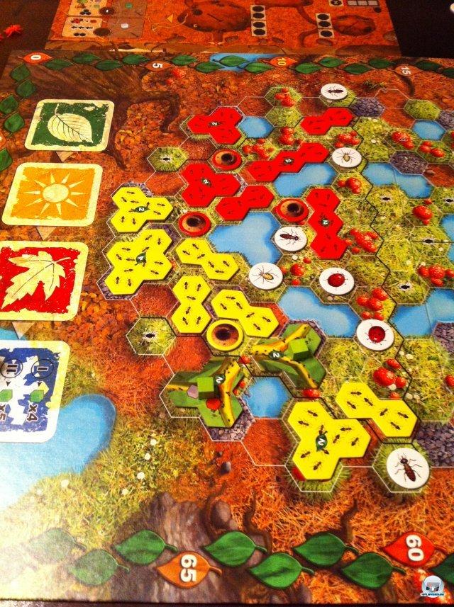 Die roten und die gelben Ameisenvölker kommen sich bereits in die Quere. Wer kann möglichst schnell viele Rohstoffe und Siegpunkte einheimsen?