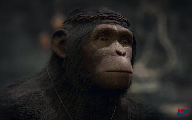 Die Figuren - allen voran die Affen - sehen gut aus. Vor allem die Mimik weiß zu überzeugen.