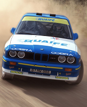 Alle Infos zu DiRT Rally (VirtualReality)