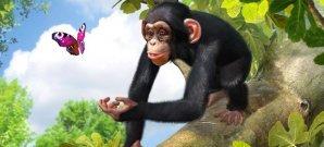 Screenshot zu Download von Zoo Tycoon