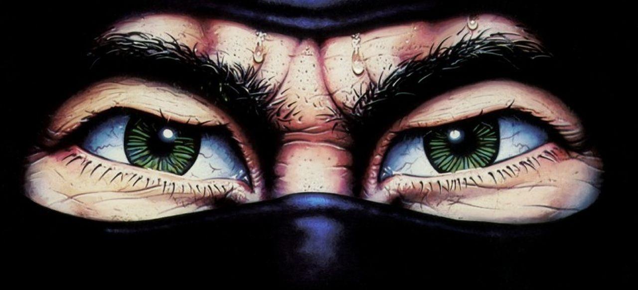 The Last Ninja (Action) von Activision