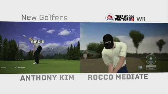 Golf-Spieler und Kurse (Wii)